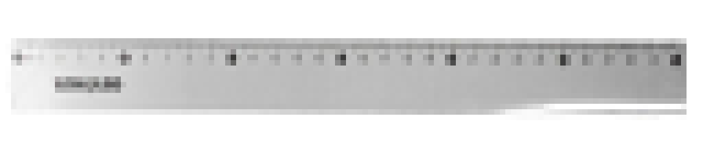 LEOELEO - REGUA PLASTICA 30CM - PT.25UN